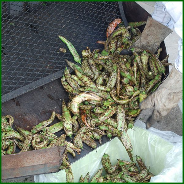 Flame Roasted Hatch Chile