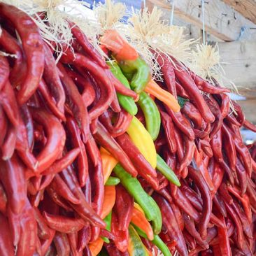 hatch-red-chile-800