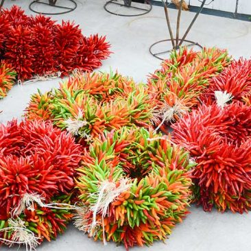 red-chile-wreaths